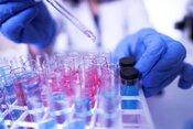 STU podporí projekty mladých vedcov sumou 96 500 eur