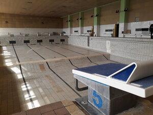 Plaváreň STU v Trnave ožije len súčinnosťou so štátom, krajom a mestom